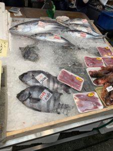 新鮮な魚が氷の上で並んでいる画像 高知デザイン新築注文住宅SAI